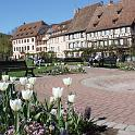 photo_wissembourg